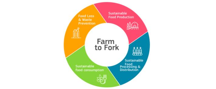 farm to fork de castro