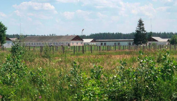 Campo Prigionia Bielorussia