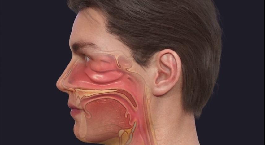 Spray Nasale Anti Long Covid